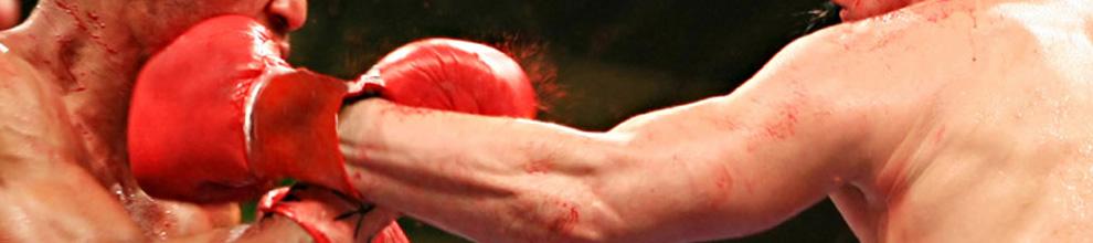 ESG- Boxing nutrition